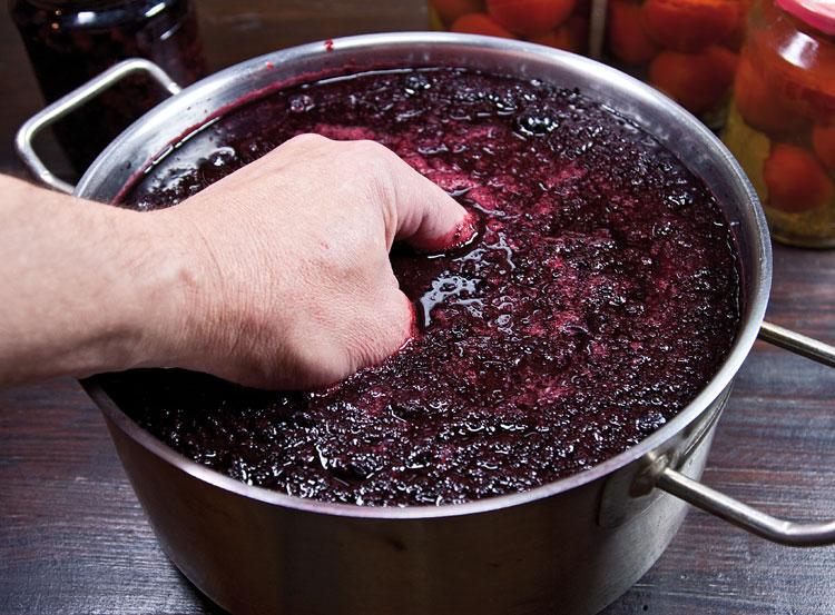 забродившее сусло черноплодной рябины
